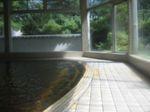 Sinkikusima2