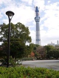 Sumidakouenkara01_2