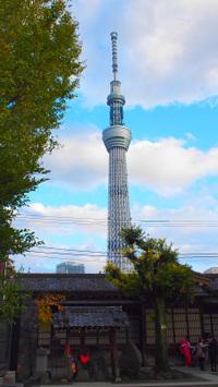 Asakusa06_2